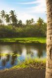 Tropisk lagun Fotografering för Bildbyråer