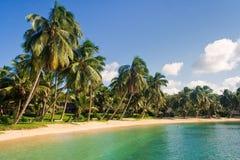 tropisk liggande Arkivfoto
