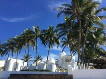 tropisk liggande Arkivbilder