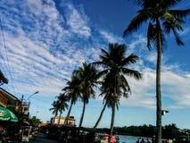 tropisk liggande Royaltyfria Bilder
