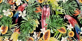 Tropisk modell för härlig vattenfärg med papegojor och blommor av hibiskusen och strelitzia Tropiska frukter papaya och bananer stock illustrationer