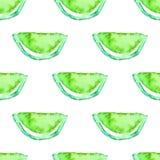 Tropisk modell för sömlös vattenfärgkiwi Exotisk bakgrund för grön limefruktfrukt Arkivfoto