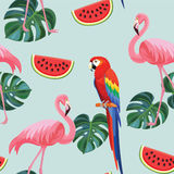 Tropisk modell med flamingo och papegojor seamless textur vektor illustrationer
