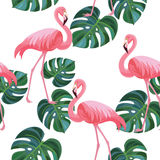 Tropisk modell med flamingo och sidor seamless textur Stock Illustrationer