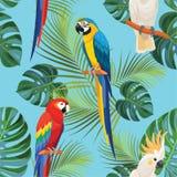 Tropisk modell med papegojor seamless texturvektor Royaltyfri Bild