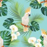 Tropisk modell med papegojor seamless texturvektor Fotografering för Bildbyråer
