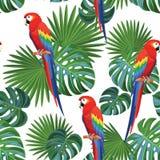 Tropisk modell med papegojor seamless texturvektor royaltyfri illustrationer