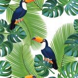 Tropisk modell med tukanfåglar seamless texturvektor vektor illustrationer