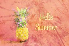 Tropisk mogen ananas och den uttrycksHELLO SOMMAREN en korallbakgrund med en textur Tekniskt feleffekt id?rikt begrepp royaltyfria foton