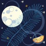 Tropisk nattbakgrund med fullmånen Royaltyfria Foton