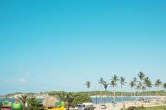 Tropisk natur, det karibiska havet, palmtr?d, ?n, Dominikanska republiken royaltyfri fotografi