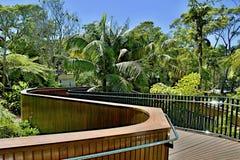 Tropisk naturgångbana Royaltyfri Foto