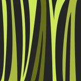 Tropisk naturmodell för vektor Royaltyfri Fotografi