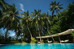 tropisk pöl Royaltyfria Foton
