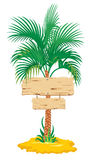 tropisk palmträd