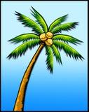 tropisk palmträd stock illustrationer