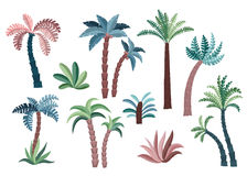 Tropisk palmträduppsättning Arkivfoto