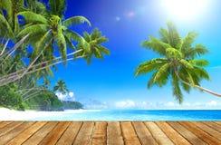 Tropisk paradisstrand och träplankagolv Arkivbilder