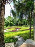 tropisk park för illustrationliggande för design hög upplösning för täppa för plan Royaltyfri Foto