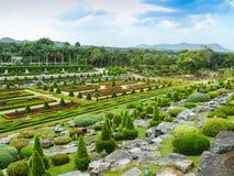 tropisk park för illustrationliggande för design hög upplösning för täppa för plan Arkivfoton