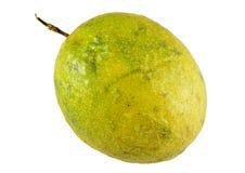 Tropisk passionfrukt Arkivbild