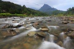 Tropisk plats med floden och berget Arkivfoto