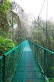 Tropisk Rainforest, Costa Rica Arkivfoton