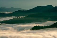 Tropisk rainforest som täckas med mist på en otta Arkivfoton
