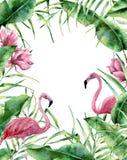 Tropisk ram för vattenfärg Hand målad exotisk blom- gräns med palmträdsidor, bananfilial, magnoliablommor och vektor illustrationer