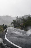 Tropisk regnig väg Royaltyfri Fotografi