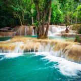 Tropisk regnskog med den Kuang Si kaskadvattenfallet laos luangprabang Arkivfoton