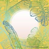 Tropisk rund ram, kopia-Spa? e med konturer av sidor av tropiska växter, monsteradeliciosa, banansidor stock illustrationer