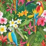 Tropisk sömlös blom- sommarmodell för blommor och för papegojor royaltyfri illustrationer