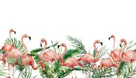 Tropisk sömlös gräns för vattenfärg med flamingo och exotiska sidor Hand målad blom- illustration med rosa fåglar vektor illustrationer