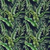 Tropisk sömlös modell för vattenfärg med banan- och kokosnötpalmblad Hand målad exotisk filial för grönska på mörker vektor illustrationer