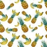 Tropisk sömlös modell för vattenfärg med den ljusa ananors och bananen Fotografering för Bildbyråer