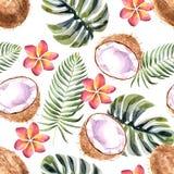 Tropisk sömlös modell för vattenfärg med kokosnöten på en vit bakgrund vektor illustrationer
