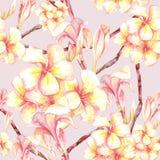 Tropisk sömlös modell med exotiska blommor Arkivfoto