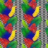 Tropisk sömlös modell med exotiska livliga sidor på svartvit stam- bakgrund Monstera gömma i handflatan, banansidor Arkivfoton
