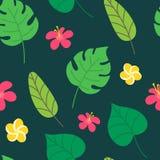 Tropisk sömlös modell på mörkt - grön bakgrund Sommardesign med vändkretssidor, monstera, banansidor, hibiskus royaltyfria foton