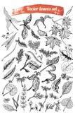 tropisk samling Botanisk hand dragen illustration Till salu malldesign och att gifta sig räddningdatumet, kuvert, valentin stock illustrationer