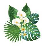 tropisk sammansättning vektor illustrationer