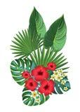 tropisk sammansättning stock illustrationer