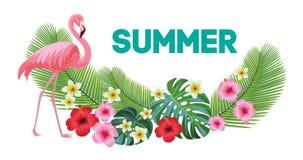 Tropisk sammansättning och flamingo också vektor för coreldrawillustration stock illustrationer