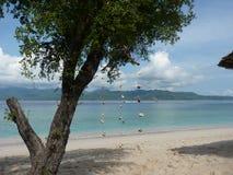 Tropisk sandig strand med trädet, koraller och blått rent vatten Arkivbilder