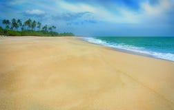 Tropisk sandig strand på Sri Lanka Royaltyfria Foton