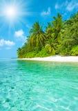 Tropisk ösandstrand med palmträd och blå himmel Arkivbilder