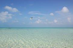 tropisk semester Arkivfoton