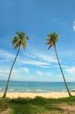 tropisk semester Arkivbilder