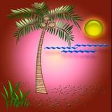 tropisk semester för konst Arkivbilder
